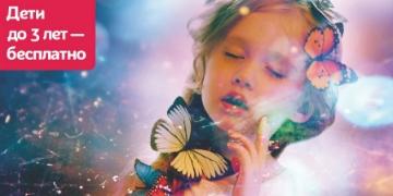 Выставка бабочек